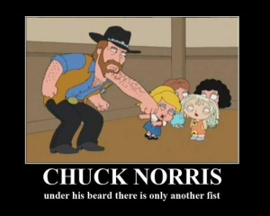 Mr. Norris is awesome. I concur. But, ask yourself this, when was the last time he was relevant? The eyes of the ranger haven't been on television for a while now.